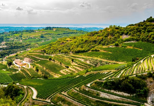 Negrar di Valpolicella Italy