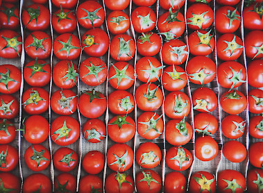 tomatos are among the fresh produce you can enjoy at acre